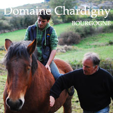 Domaine-Chardigny-Saint-Véran