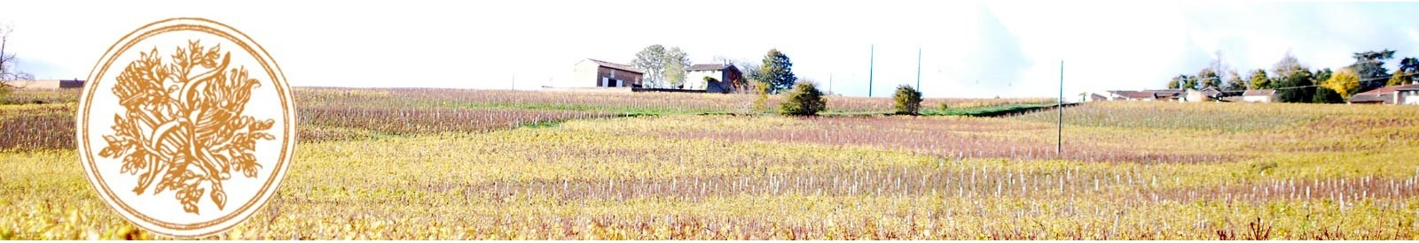 Domaine Chardigny - Saint-Véran - Organic wine