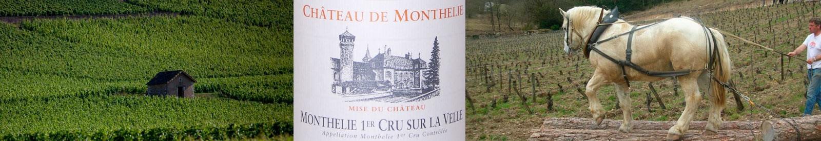 Château de Monthelie - Eric de Suremain – Vin Bio