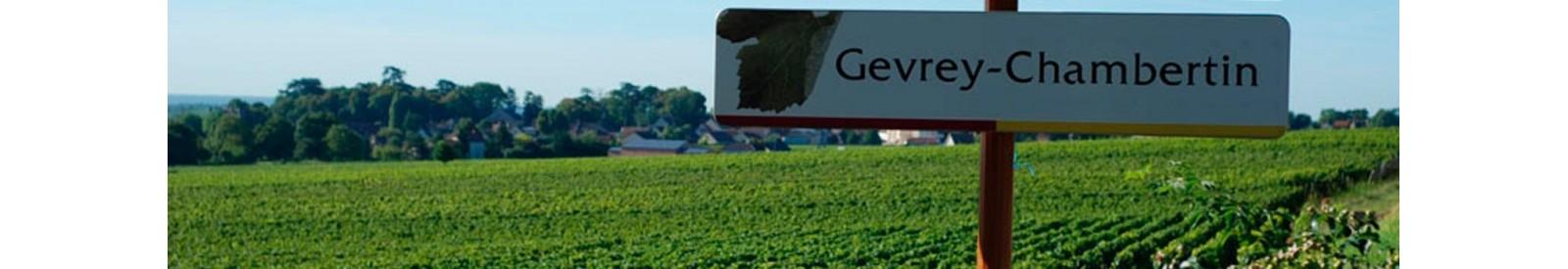 Domaine Tortochot - Gevrey-Chambertin – Vin Bio