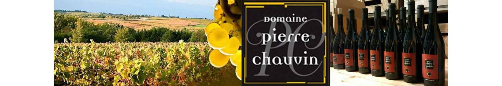 Domaine Pierre Chauvin - Anjou - Vin bio