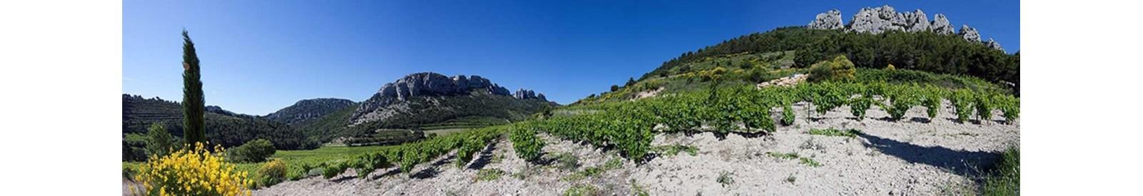 Domaine de Fenouillet - Muscat Beaumes de Venise – Vin Bio