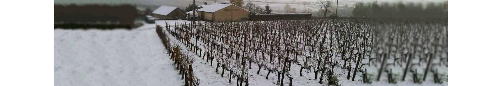 Château de Cots - Côtes de Bourg – Vin Bio