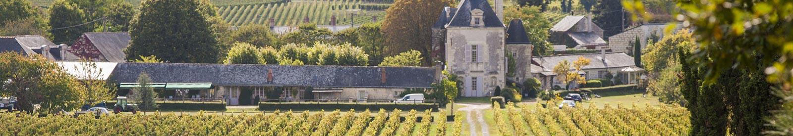 Château de Chaintres - Saumur - Organic wine