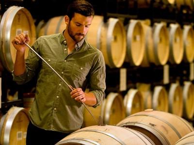 Les métiers du vin dans un domaine viticole