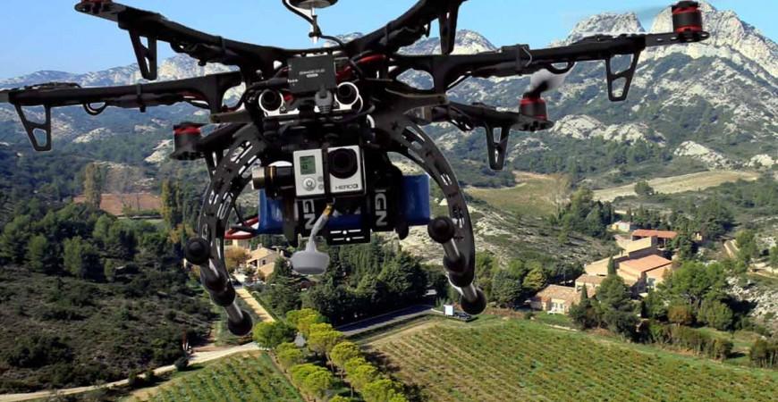 Le drone s'introduit dans le vignoble